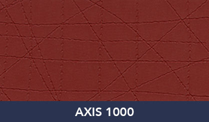 AXIS_1000