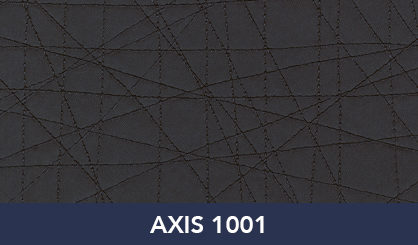 AXIS_1001