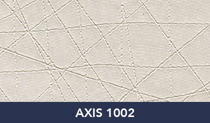 AXIS_1002