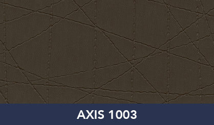 AXIS_1003