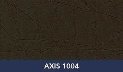 AXIS_1004