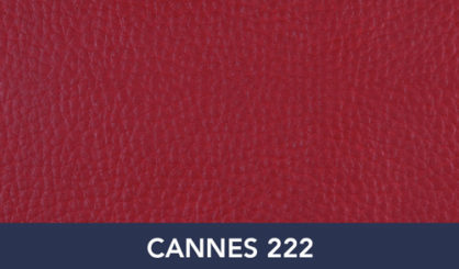CANNES-222