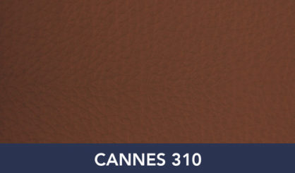 CANNES-310