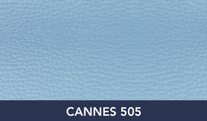 CANNES-505