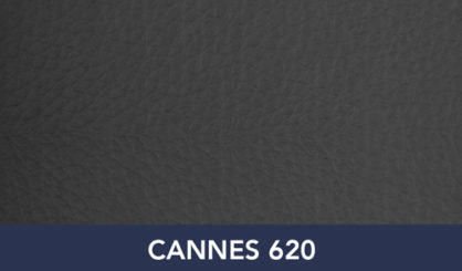 CANNES-620