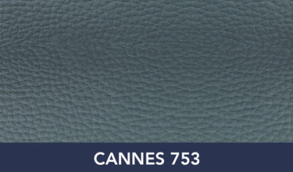 CANNES-753