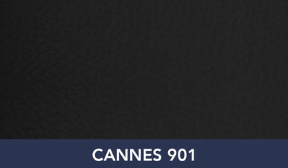 CANNES-901