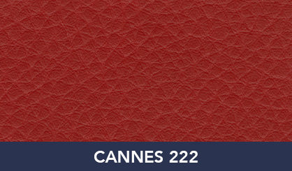 CANNES_222
