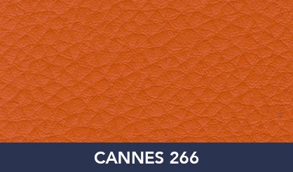 CANNES_266