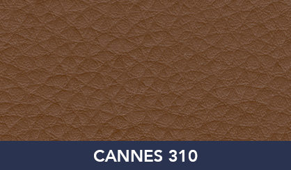 CANNES_310
