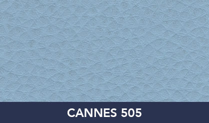 CANNES_505