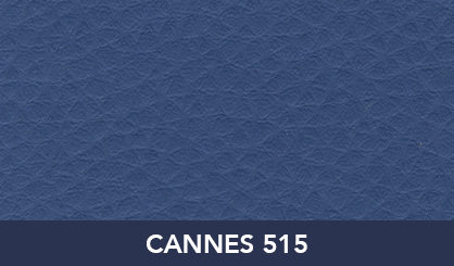 CANNES_515