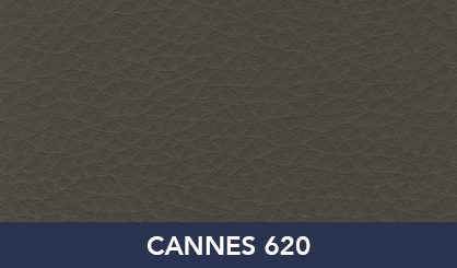 CANNES_620