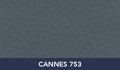 CANNES_753
